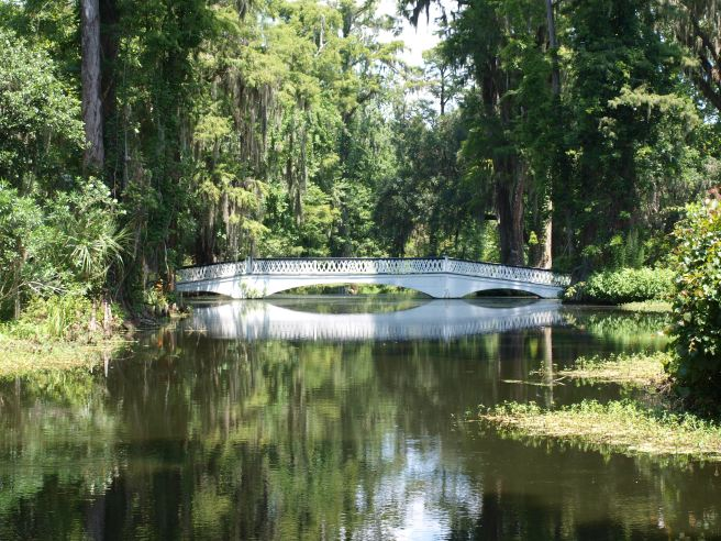 The White Bridge In Magnolia Gardens
