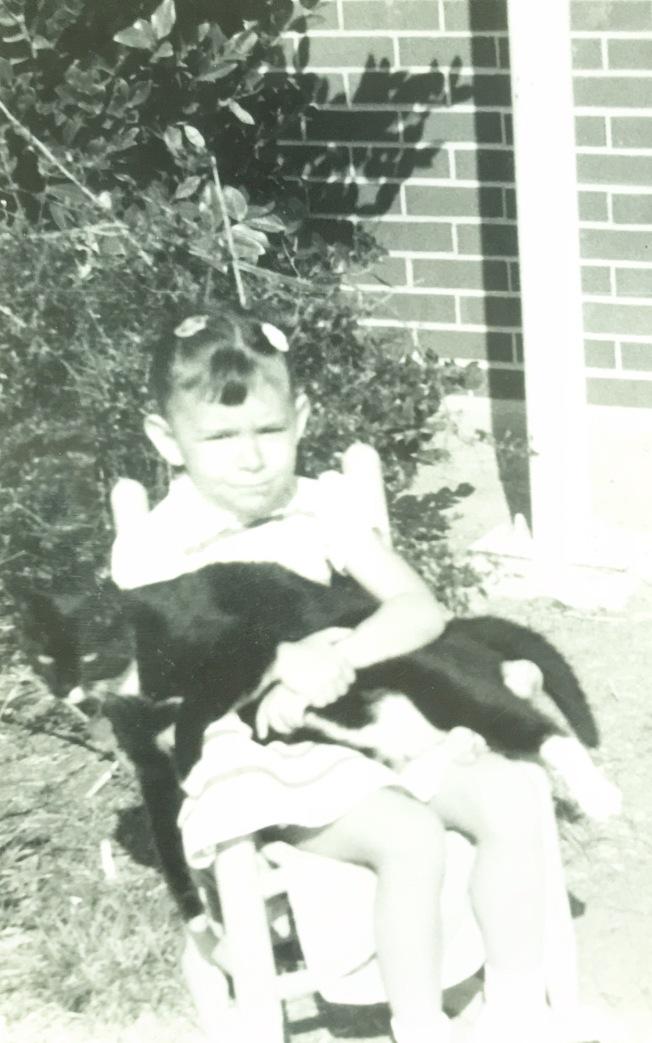 1961 Crazy Cat