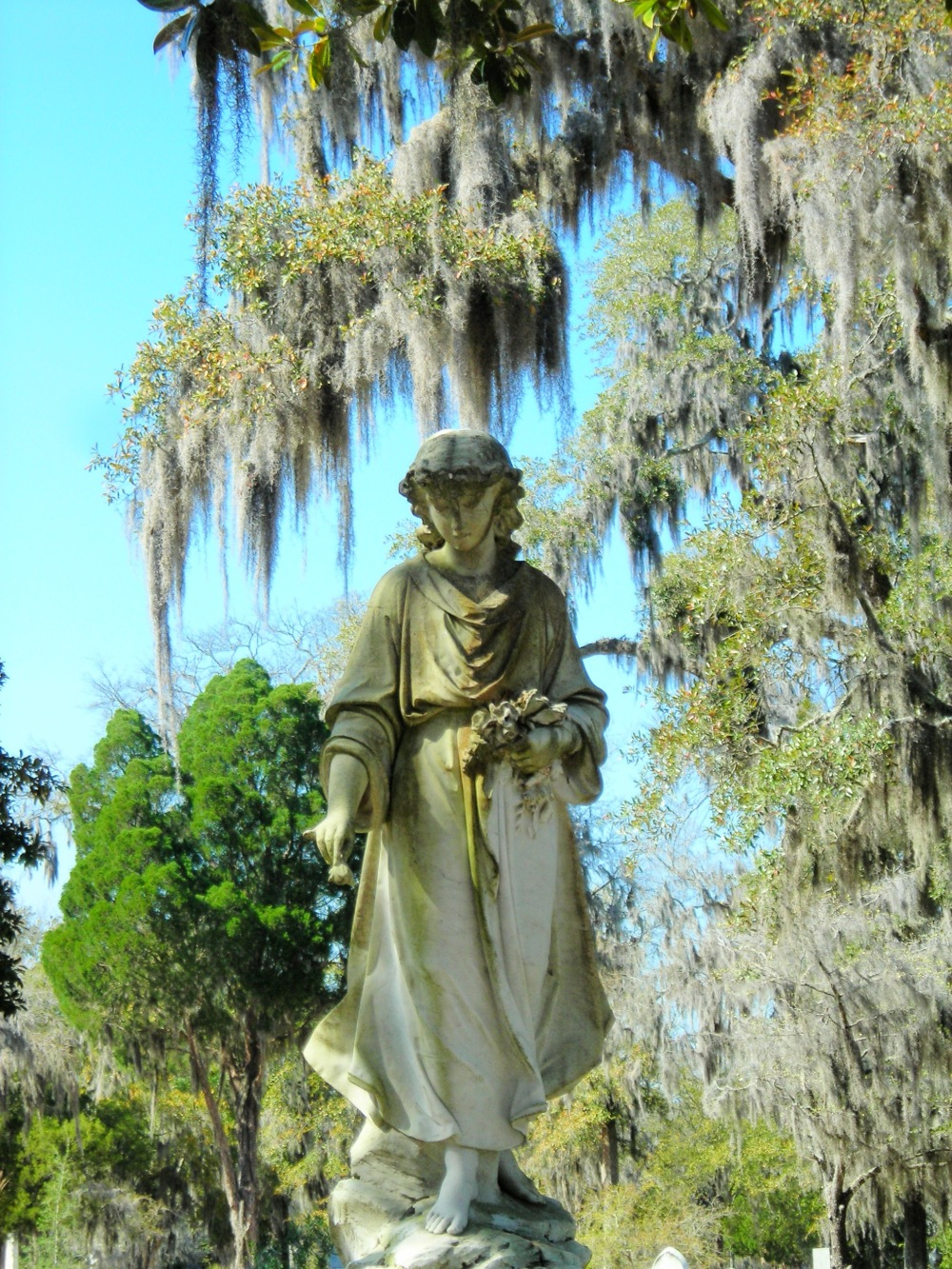 Angel In Forsyth Park